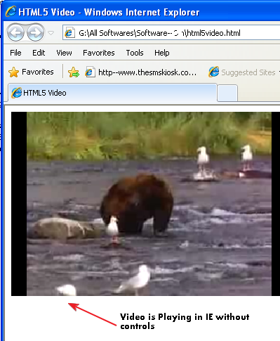 HTML5 Video tag on IE 8 without control