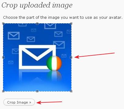 Wordpress image crop