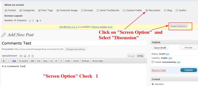 wordpress screen option use