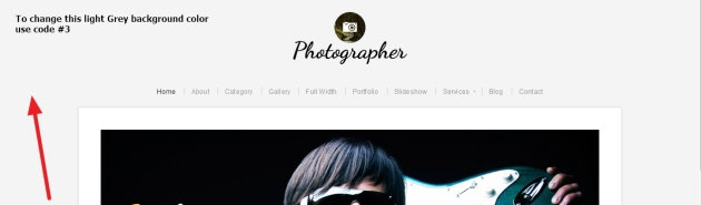 Photographer By Organic Themes background Modifications