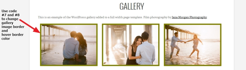 Photographer  By  Organic  Themes  gallery  page  Modifications