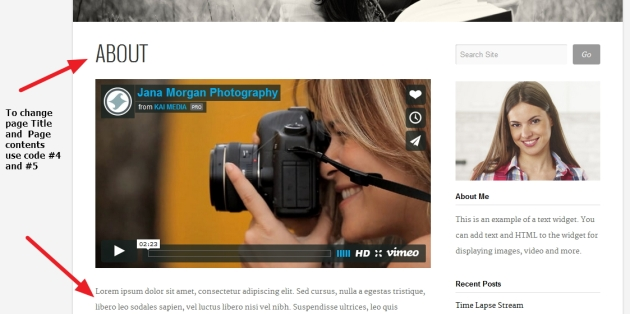 Photographer By Organic Themes page title and content Modifications