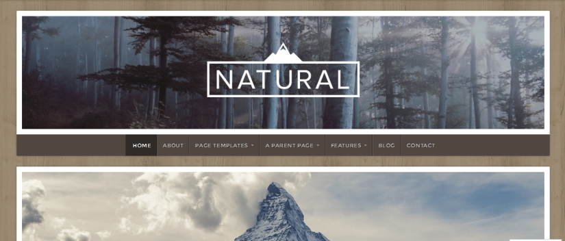 theme natural by organic themes