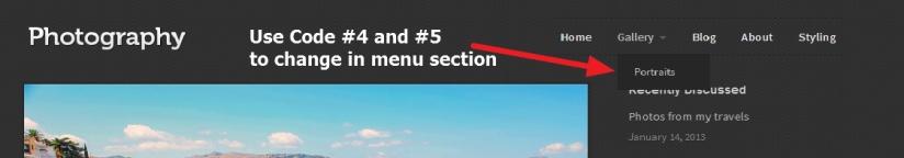 theme photographer top menu style change