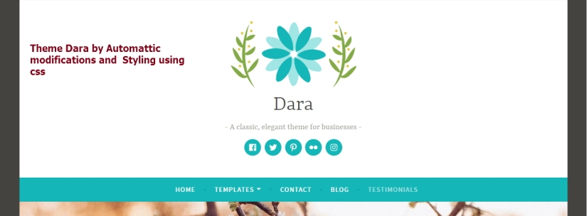 Theme Dara by Automattic documentation