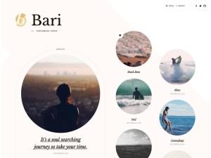 theme bari customization
