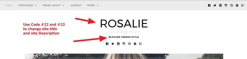 site title and site description modification