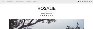 wordpress theme rosalie modifications documentation support customization css help