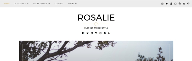 wordpress theme rosalie modifications documentation support customization css help