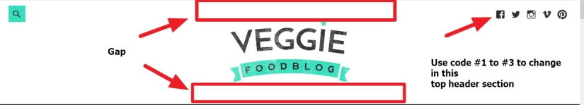 Theme Veggieby Anariel Design top header logo section modifications