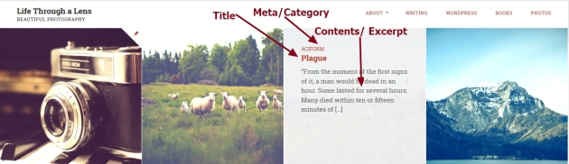 Lens By Pro Theme Design archive home category search and tag page title meta and contents modification
