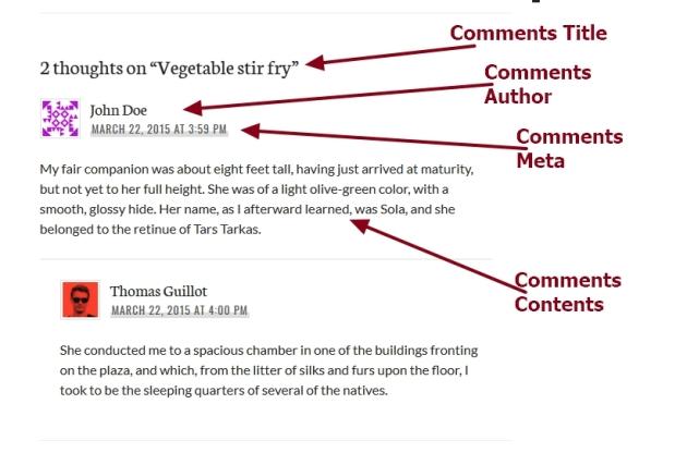 theme publication by automattic comments section modification