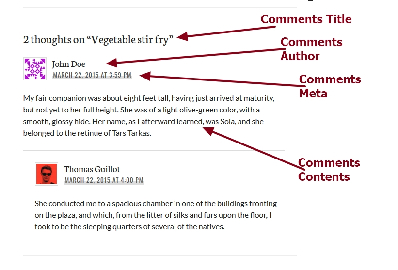 theme publication by automattic comments section modification