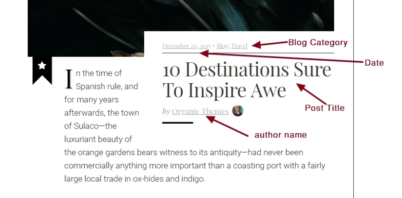 Luxury brand theme wordpress blog post date category title author modifications