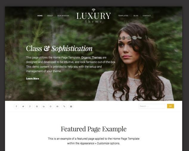 Luxury brand theme wordpress