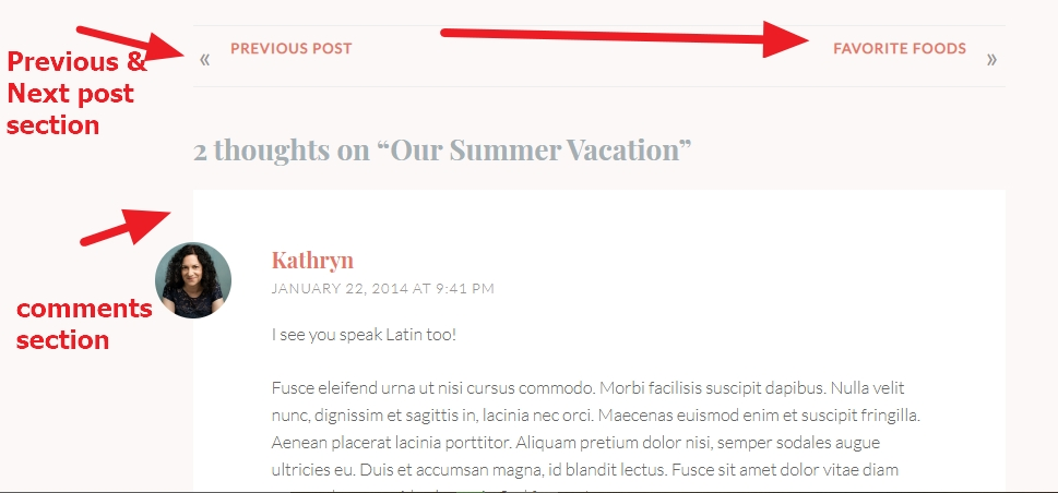 previous and next post and comments section modifications wordpress theme